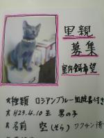 VFSH0106.JPG