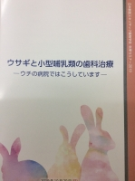IMG_9382.JPG